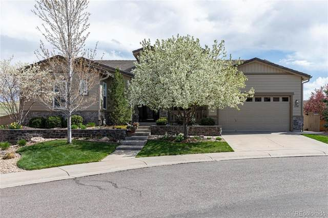 3740 Fairbrook Point, Highlands Ranch, CO 80130 (#2399805) :: The Dixon Group