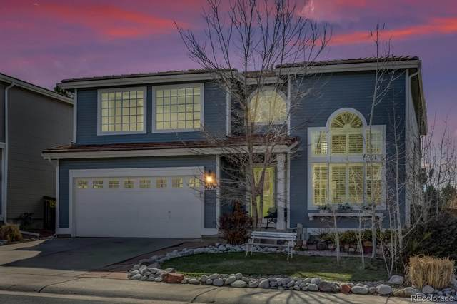 9779 Dampler Way, Highlands Ranch, CO 80130 (#2401179) :: The Brokerage Group
