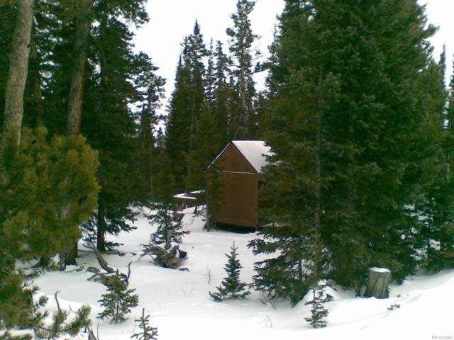 Lot 611 Puma Place, Fairplay, CO 80440 (#2401445) :: Berkshire Hathaway Elevated Living Real Estate