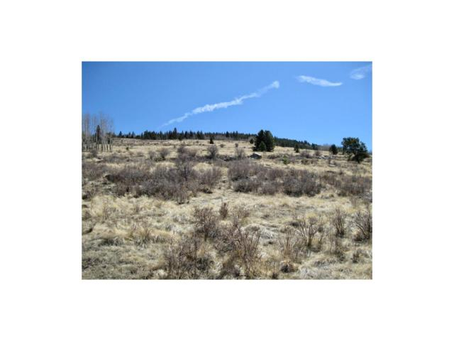 R35T14S70 Unknown, Cripple Creek, CO 80813 (MLS #2407618) :: 8z Real Estate