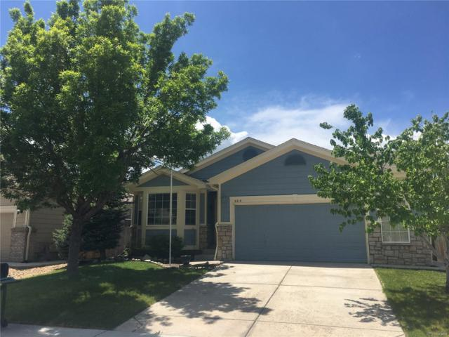 5219 Territorial Street, Parker, CO 80134 (#2408291) :: The Heyl Group at Keller Williams
