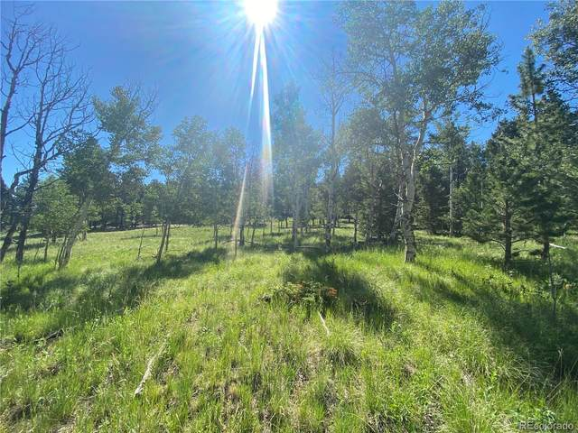 1828 Bellows Road, Hartsel, CO 80449 (#2414333) :: Berkshire Hathaway HomeServices Innovative Real Estate