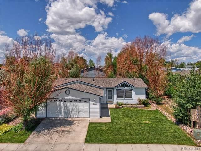 4577 Gray Fox Heights, Colorado Springs, CO 80922 (MLS #2417380) :: The Sam Biller Home Team