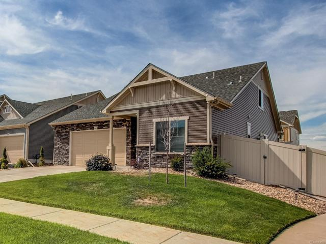 4495 Walden Court, Denver, CO 80249 (#2417896) :: Group 46:10 - Denver