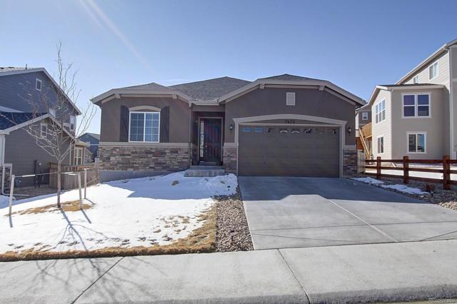 7672 Bandit Drive, Castle Rock, CO 80108 (#2418026) :: Structure CO Group