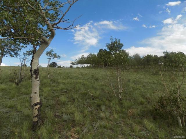 285 Tatanka Trail, Como, CO 80432 (#2420420) :: The Heyl Group at Keller Williams