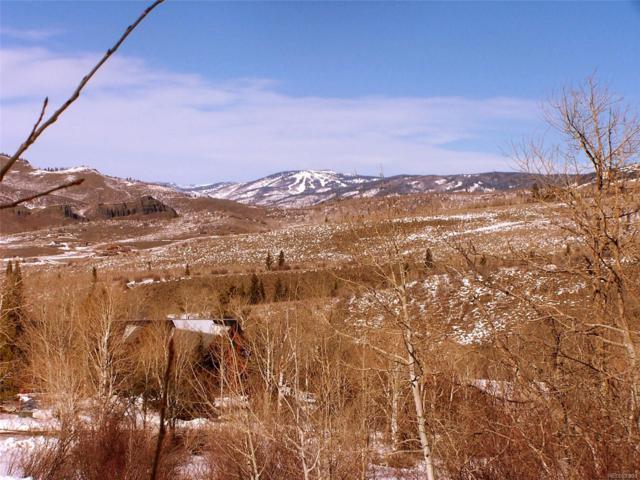 31110 Broken Talon Trail, Oak Creek, CO 80467 (#2420834) :: The DeGrood Team