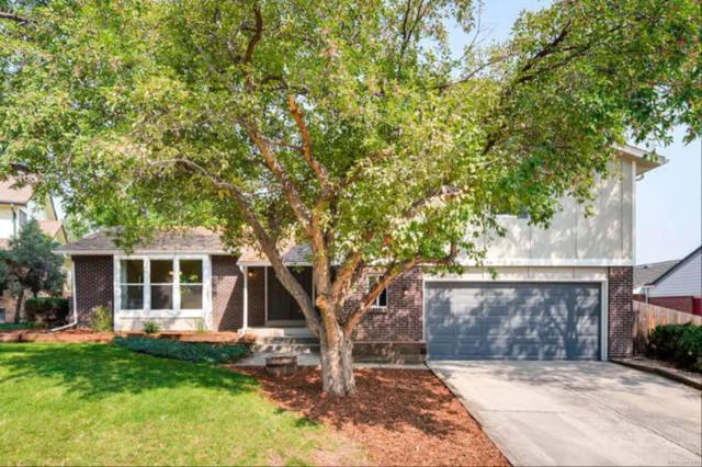 7560 S Reed Court, Littleton, CO 80128 (#2423319) :: The Galo Garrido Group