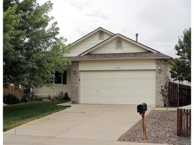 11592 River Run Parkway, Henderson, CO 80640 (MLS #2424877) :: 8z Real Estate