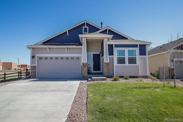 1792 Willow Park Way, Monument, CO 80132 (#2426091) :: The Harling Team @ HomeSmart