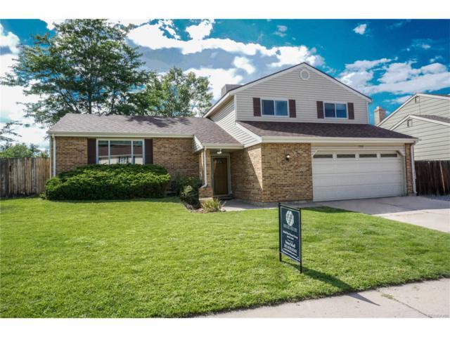 7203 S Johnson Street, Littleton, CO 80128 (MLS #2432734) :: 8z Real Estate