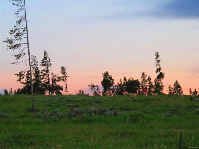 280 County Road 6236S, Granby, CO 80446 (#2435823) :: The Heyl Group at Keller Williams