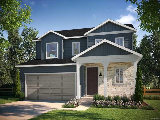 4858 Point Mesa Street, Castle Rock, CO 80108 (#2437365) :: The Peak Properties Group