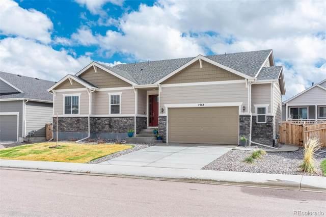 7268 Greenwater Circle, Castle Rock, CO 80108 (#2441493) :: Wisdom Real Estate