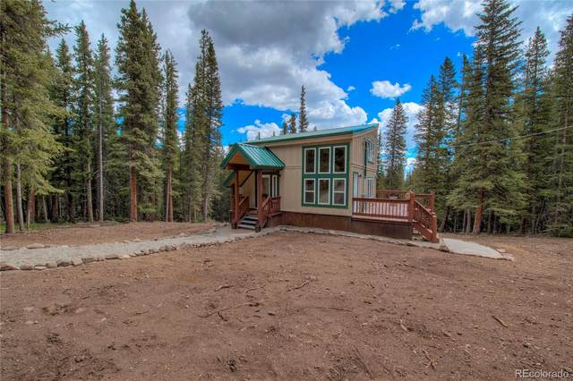 140 Morrell Court, Fairplay, CO 80440 (MLS #2442821) :: 8z Real Estate