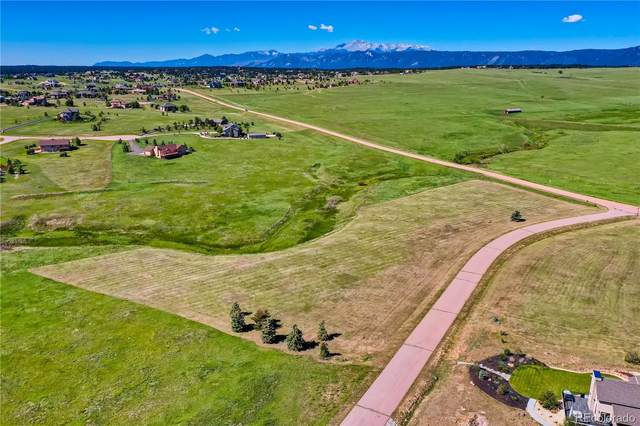 1317 Montcombe Drive, Monument, CO 80132 (#2446357) :: The Harling Team @ HomeSmart