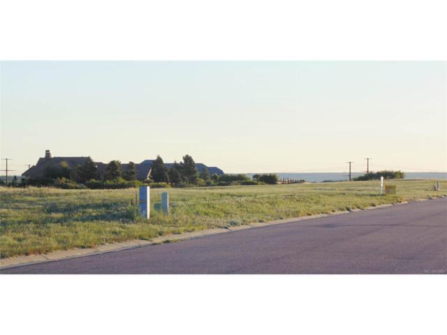 1615 White Fir Terrace, Castle Rock, CO 80108 (MLS #2446605) :: 8z Real Estate