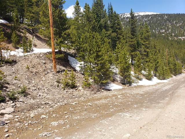 000 Hilltop Road, Idaho Springs, CO 80452 (MLS #2447631) :: Bliss Realty Group