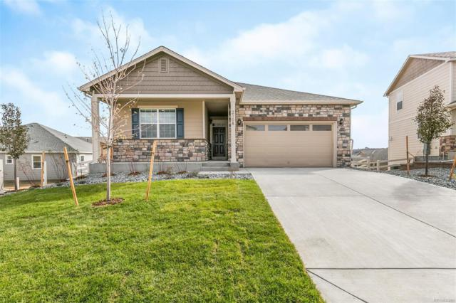 5943 High Timber Circle, Castle Rock, CO 80104 (#2448747) :: The DeGrood Team