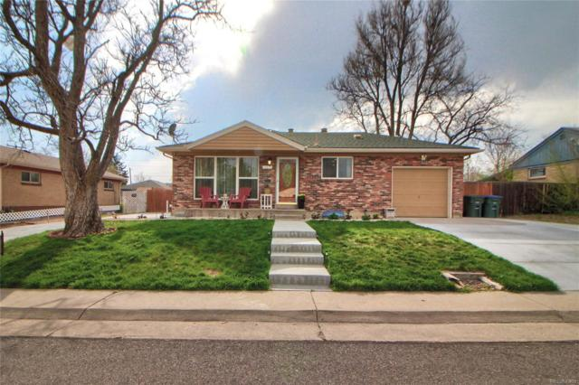 10873 Pearl Court, Northglenn, CO 80233 (#2450388) :: The Galo Garrido Group