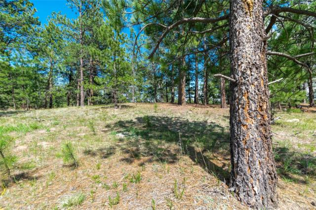 1610 Trumpeters Court, Monument, CO 80132 (MLS #2452244) :: 8z Real Estate