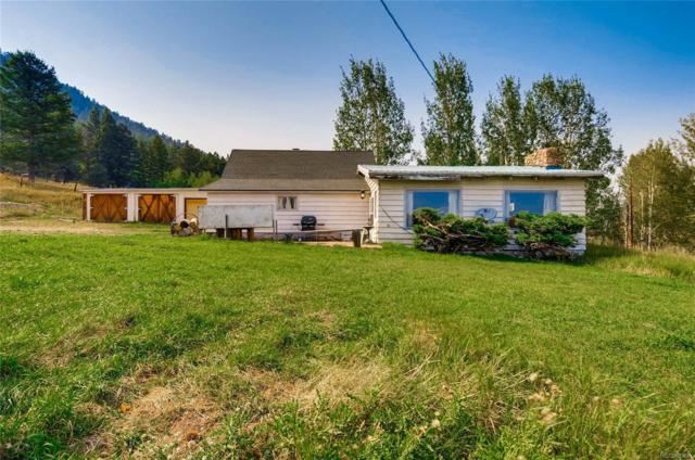 32183 Snowshoe Road, Evergreen, CO 80439 (#2452463) :: The Pete Cook Home Group