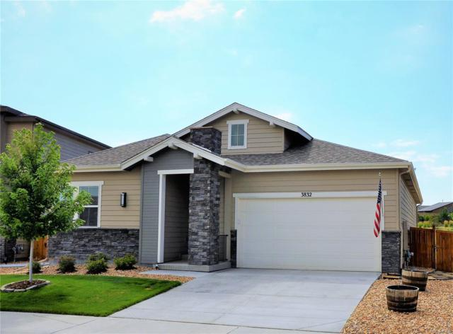 3832 Ghost Dance Drive, Castle Rock, CO 80108 (#2454460) :: The City and Mountains Group
