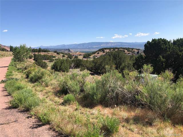 120 Bobwhite Loop, Canon City, CO 81212 (#2463121) :: James Crocker Team