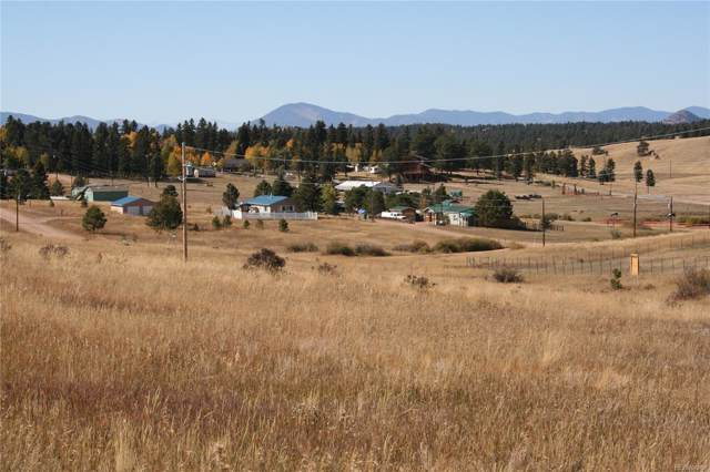 829 & 845 Maid Marian Drive, Divide, CO 80814 (MLS #2463158) :: 8z Real Estate