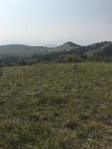 12 (TBD) Turret Trail, Pine, CO 80470 (#2466608) :: Hometrackr Denver
