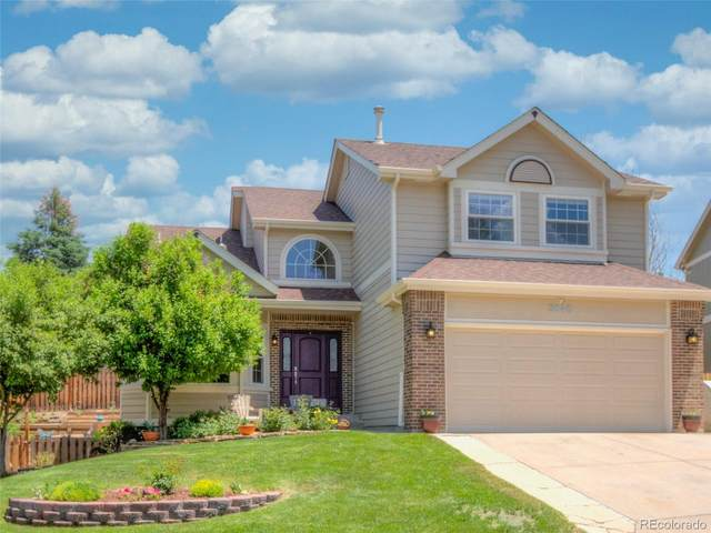 3845 Gingham Way, Colorado Springs, CO 80918 (#2468069) :: The DeGrood Team