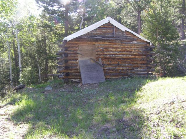 Miners Candle Road, Idaho Springs, CO 80452 (#2474045) :: The Pete Cook Home Group