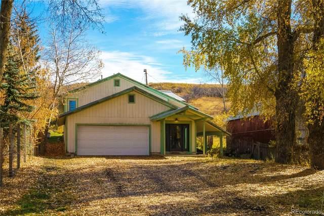 211 Dodge Avenue, Oak Creek, CO 80467 (#2478060) :: RE/MAX Professionals