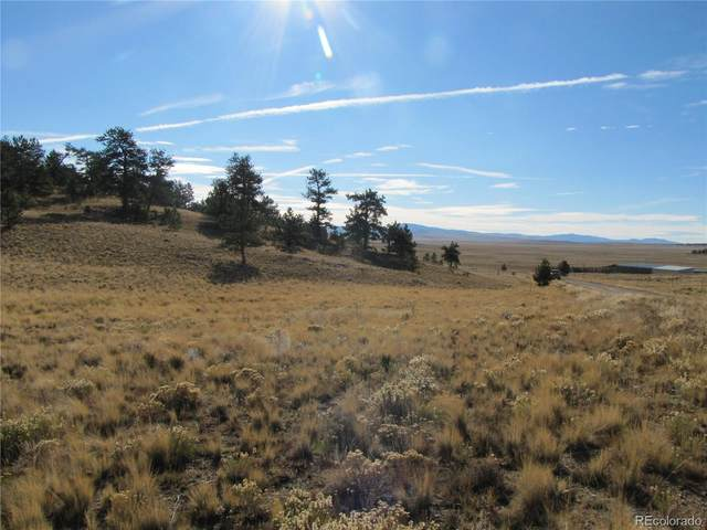 0 Forge Road, Hartsel, CO 80449 (#2478284) :: The DeGrood Team