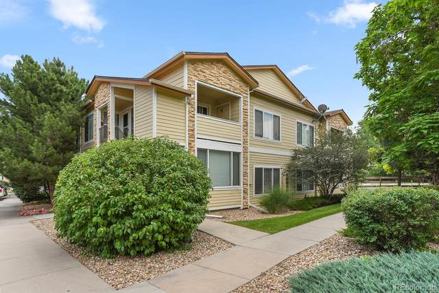 4875 S Balsam Way 5-101, Littleton, CO 80123 (MLS #2478970) :: Bliss Realty Group