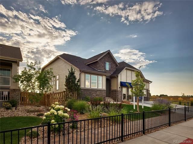 5387 Alberta Falls Street, Timnath, CO 80547 (MLS #2479897) :: Kittle Real Estate