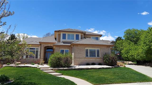 9133 Winrow Court, Highlands Ranch, CO 80126 (#2483178) :: The Artisan Group at Keller Williams Premier Realty