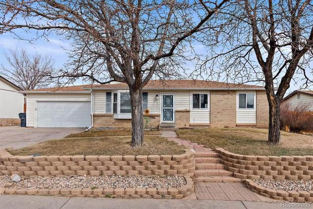 4314 S Cole Court, Morrison, CO 80465 (#2484977) :: Berkshire Hathaway Elevated Living Real Estate
