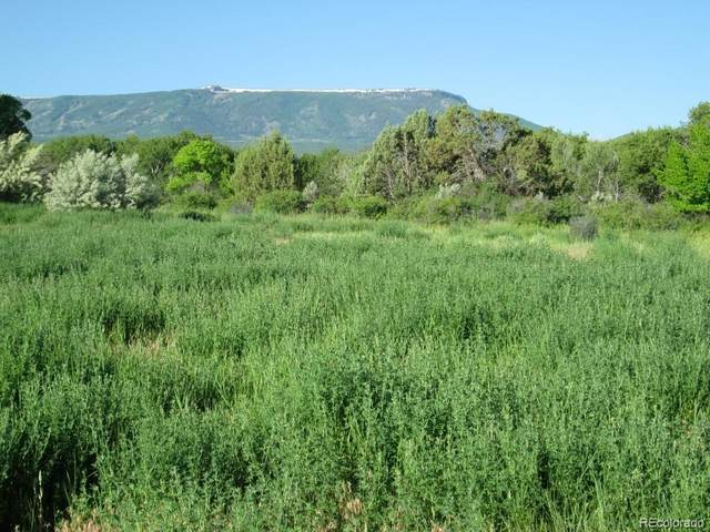 10600 Foxcross Lane, Mesa, CO 81643 (#2486587) :: Mile High Luxury Real Estate