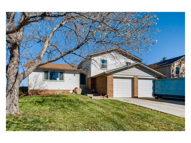 1012 Park View Court, Castle Rock, CO 80104 (MLS #2494346) :: 8z Real Estate