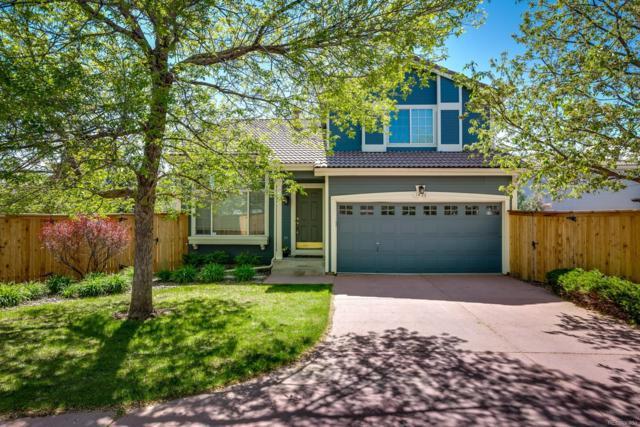 1436 Braewood Avenue, Highlands Ranch, CO 80129 (#2494555) :: Wisdom Real Estate