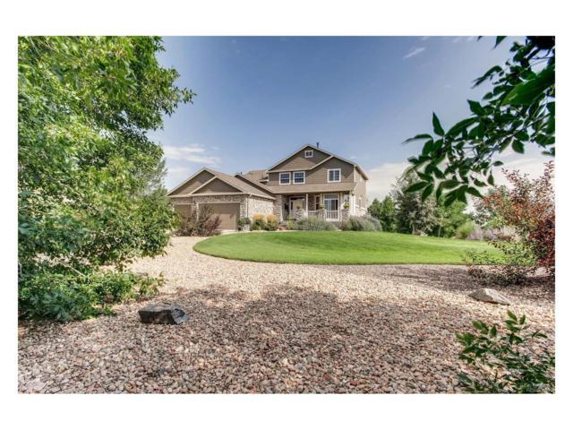 6193 E 167th Avenue, Brighton, CO 80602 (MLS #2496221) :: 8z Real Estate