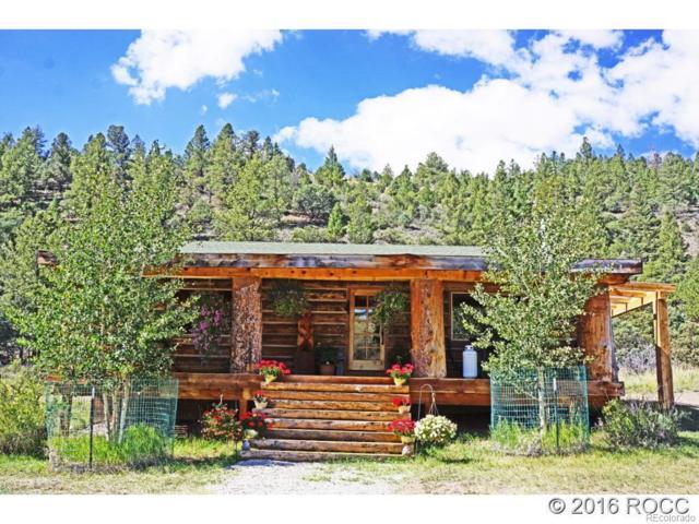 49680 County Road Ll56, Villa Grove, CO 81155 (#2500084) :: The HomeSmiths Team - Keller Williams