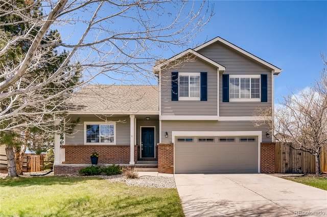 820 Whispering Oak Drive, Castle Rock, CO 80104 (#2501986) :: Wisdom Real Estate