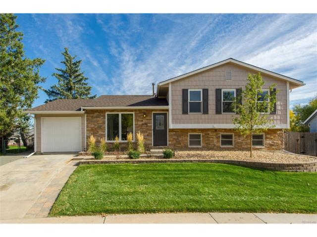 4446 S Xenophon Way, Morrison, CO 80465 (#2503880) :: The Peak Properties Group