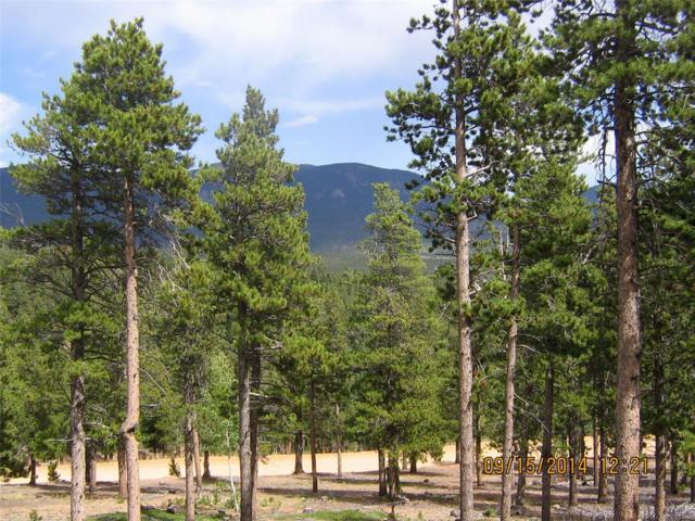 Royal Ridge Road, Bailey, CO 80421 (MLS #2505908) :: 8z Real Estate