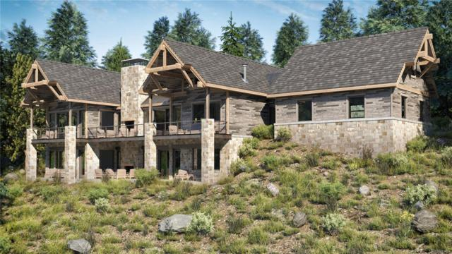 19 Ridge View Road, Nederland, CO 80466 (#2507054) :: The City and Mountains Group