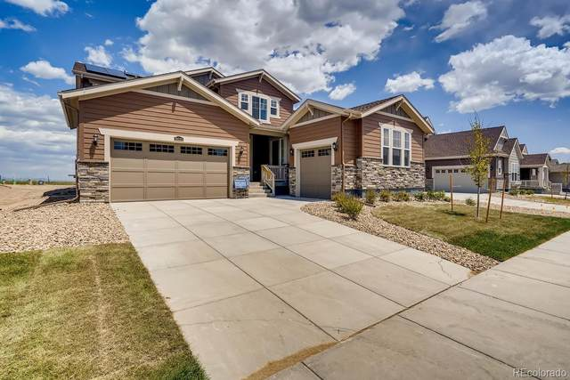 19033 W 95th Lane, Arvada, CO 80007 (#2509705) :: Berkshire Hathaway Elevated Living Real Estate