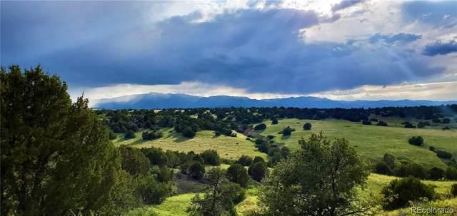 Elk Lane, Pueblo, CO 81004 (#2511203) :: The HomeSmiths Team - Keller Williams