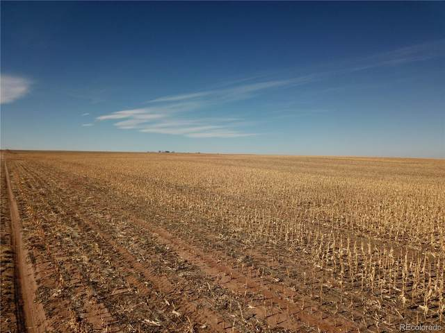 158 Acres - Dryland, Limon, CO 80821 (#2512718) :: The HomeSmiths Team - Keller Williams